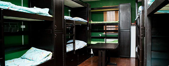В столице открылась сеть хостелов «Вежливый Лось»